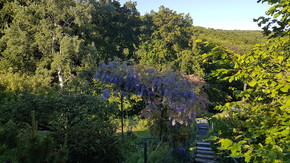 Kleingartenwohnhausgrundstück mit Wien-Panoramablick - 360° Tour