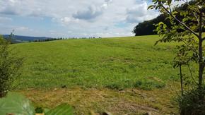 Flexibel abtrennbares Baugrundstück in Ruhelage von Hintersdorf