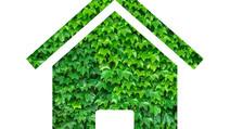 Ökologisch bauen und wohnen