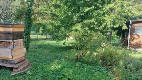 1130 Wien; Großes Kleingarten(wohnhaus)-Grundstück mit Wienblick