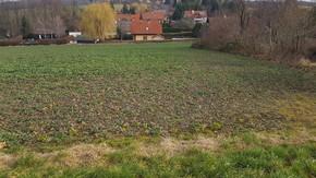 Hintersdorf im Wienerwald: Grundstück mit Potential für 2 Doppelhäuser