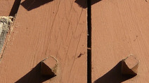 Nägel aus Holz - Innovationen für die Umwelt